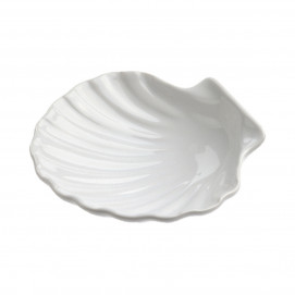 Scallop shell - White